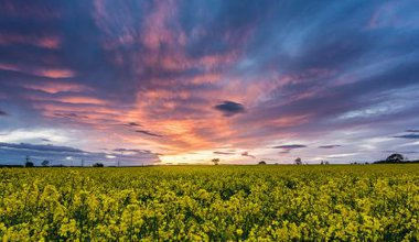 'Yorkshire Sunset'. By Chris Combe. Some Rights Reserved CC BY 2.0.
