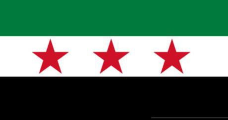 Syrian rev flag