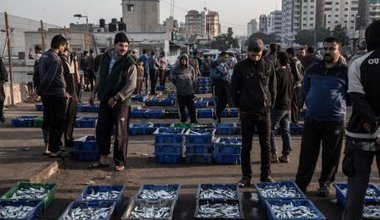Fish market in Gaza Strip - struggle to survive.