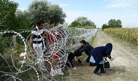 800px-Migrants_in_Hungary_2015_Aug_018.jpg