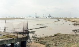 Canvey Wick Essex_March 2013.jpg