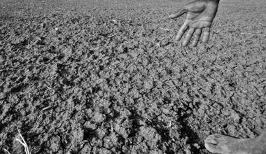 Drought_affected_area_in_Karnataka,_India,_2012.jpg