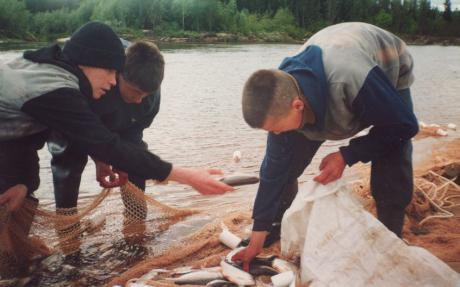 Khanty men fishing in a river with nets.