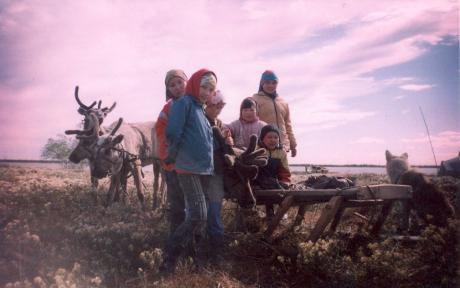 Khanty Children in a lichen field with reindeer.