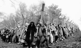 Women's peace protests - RAF Greenham Common air base, 1982
