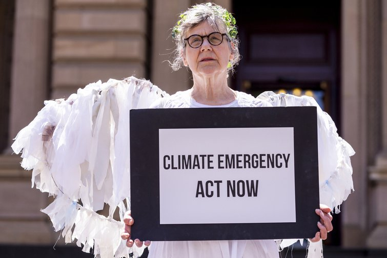 'Guardian angel' in the Australian chapter of ExtinctionRebellion, Melbourne, November, 2018..