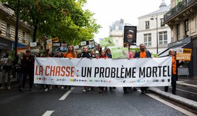 La Chasse protesters.jpg