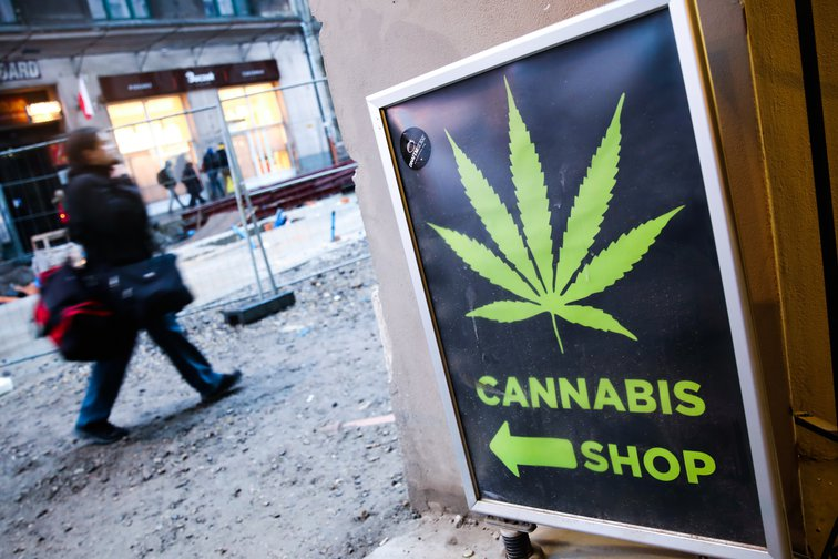 The War on Drugs has failed. But a profit-driven legal market is not the answer