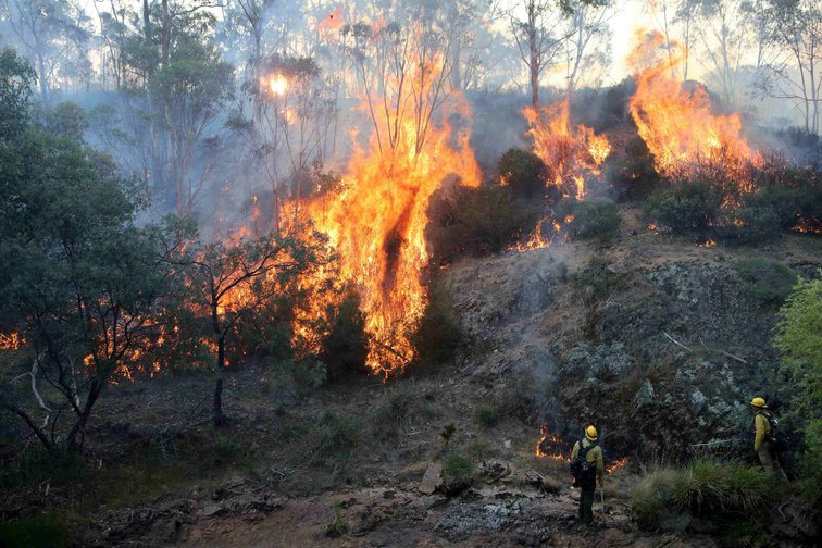 January 12, 2020, Victoria, Australia: firefighters from a joint Australian and US strike team.