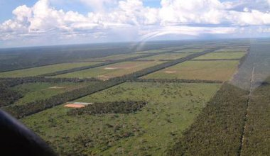 ParaguayChaco_Clearings_for_cattle_grazing_0.jpg