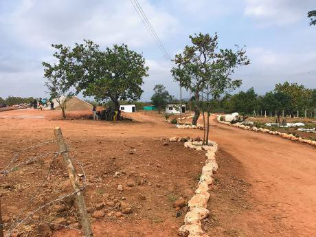 Inside a demobilisation camp