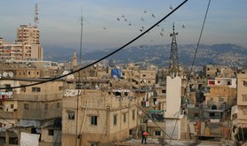 Pigeons_over_Shatila_OpenDemocracy.jpg