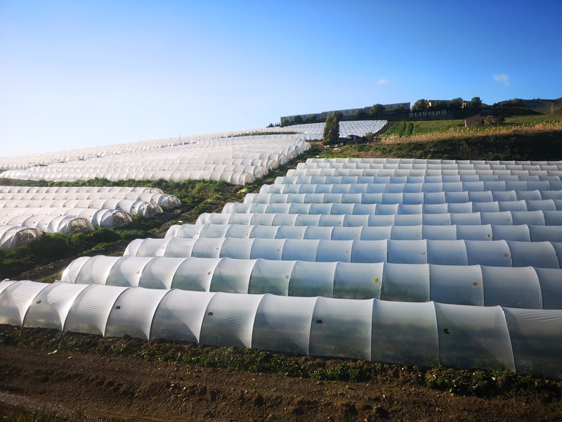 Polytunnels of greenhouses, Ragusa, Sicily.