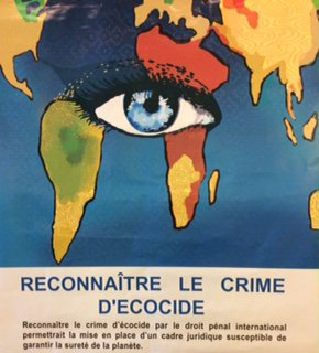 Recognise the crime of ecocide - poster.jpg