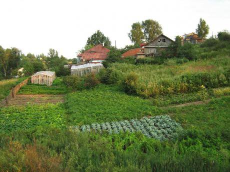 A small scale farm in Russia.