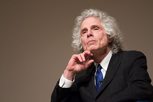 Several Reasons why Steven Pinker is Wrong