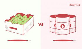 aguacate vs petroleo