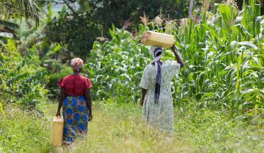 Women have to walk for miles to collect water after being displaced from their land in Uganda.