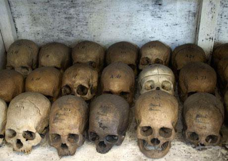 Skulls in Indonesia.