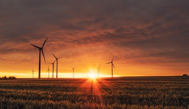 Wind turbines over field at sunrise/sunset