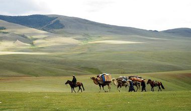 Caravan in Mongolia. Shutterstock/ Allocricetulus. All rights reserved.